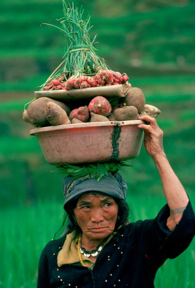 Organic「Ifugao Woman Going to Market, Phillipines」:写真・画像(10)[壁紙.com]
