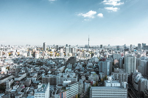 Tokyo Tower「Busy Streets in Tokyo and the view of Tokyo skytree / Tokyo, Japan」:スマホ壁紙(8)