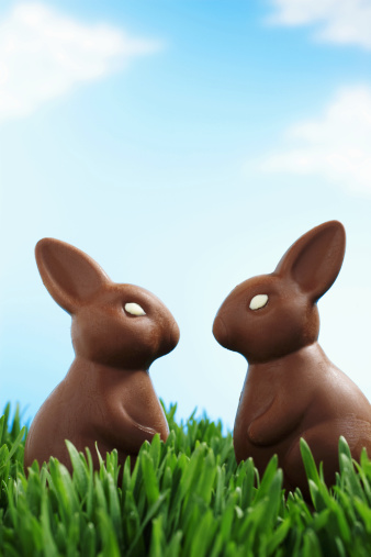 Easter Bunny「Two chocolate Easter bunnies facing each other in grass, side view」:スマホ壁紙(19)