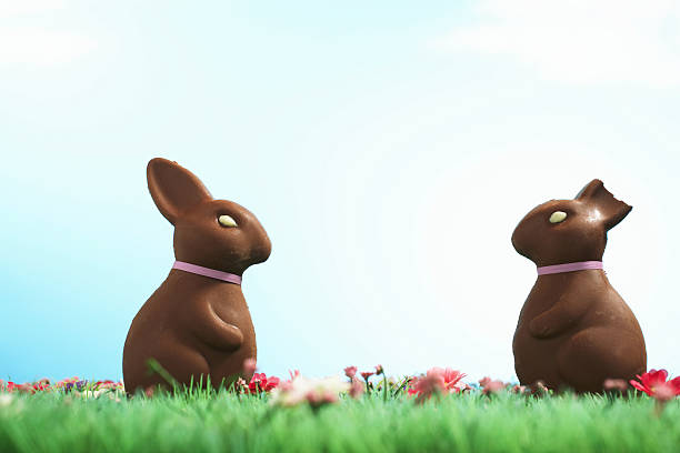 Two chocolate Easter bunnies one with half of ear bitten off:スマホ壁紙(壁紙.com)