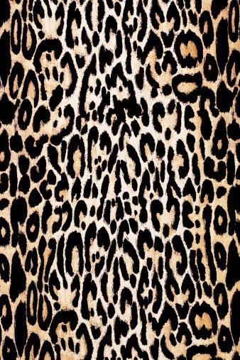 Leopard pattern「Leopard Print Texture」:スマホ壁紙(3)