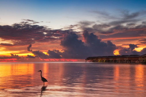 Bungalow「Sunset on the Maldives」:スマホ壁紙(9)