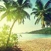 タカマカビーチ壁紙の画像(壁紙.com)