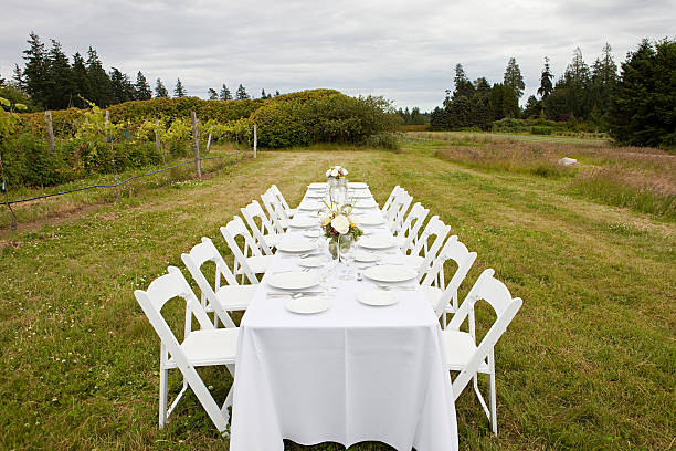 Dinner table in a rural field:スマホ壁紙(壁紙.com)