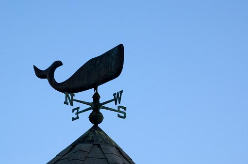 Monterey Bay「Whale Wind Vane」:スマホ壁紙(16)