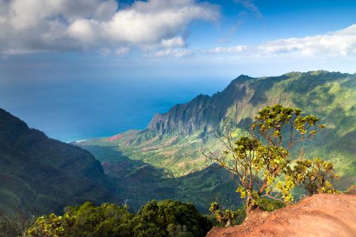 Kalalau Valley「Kauai Na Pali Coast View Pacific Ocean Hawaii」:スマホ壁紙(12)