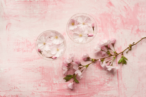 Cherry Blossom「Pink cherry blossom in glass, close up」:スマホ壁紙(8)