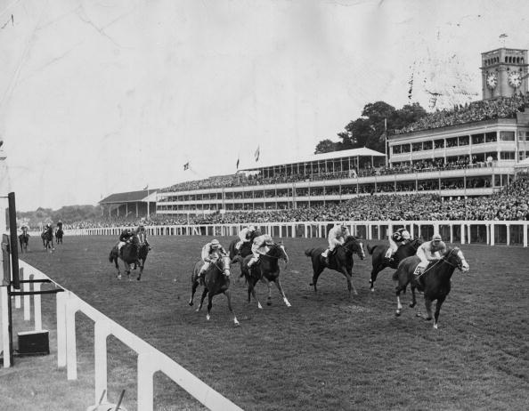 Wooden Post「Queen Anne Stakes」:写真・画像(12)[壁紙.com]