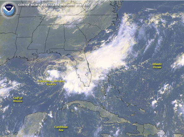 North America「Tropical Storm Barry Hits Gulf Coast」:写真・画像(17)[壁紙.com]
