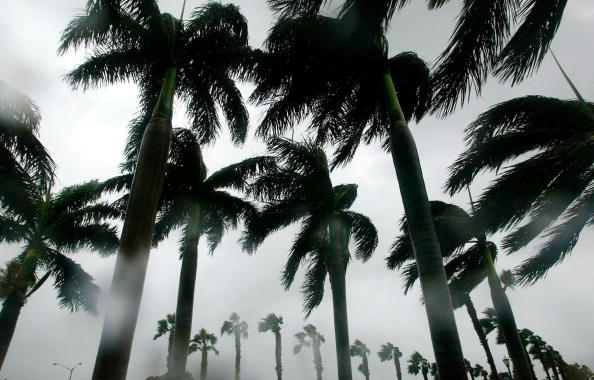 Tropical Climate「Florida Coast Prepares For Hurricane Frances」:写真・画像(15)[壁紙.com]
