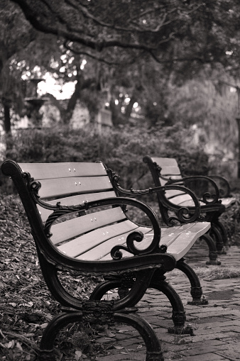 Wrought Iron「Two park benches in Savannah」:スマホ壁紙(10)