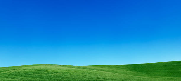 Panoramic spring landscape 55MPix  XXXXL meadow, blue sky:スマホ壁紙(壁紙.com)