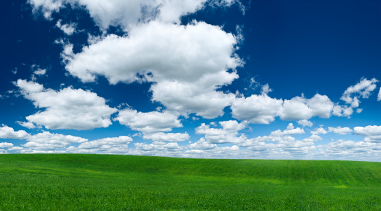 Environmental Conservation「Panoramic spring landscape 66 MPix XXXL - green field, sky」:スマホ壁紙(19)