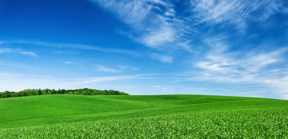 青「パノラマに広がる春の風景 XXXXL 28 MPix-グリーンフィールド、ブルースカイ」:スマホ壁紙(6)