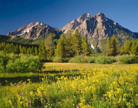 National Recreation Area「Golden Morning in Idaho (P)」:スマホ壁紙(16)