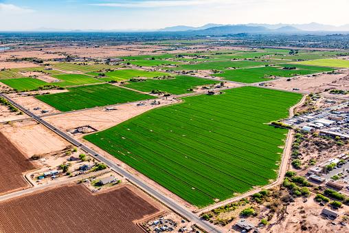 Plowed Field「Arizona Desert Farmland Aerial」:スマホ壁紙(16)