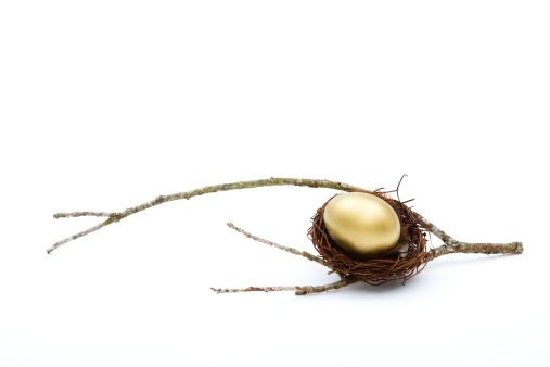 Animal Egg「A golden nest egg in a nest on a branch」:スマホ壁紙(3)