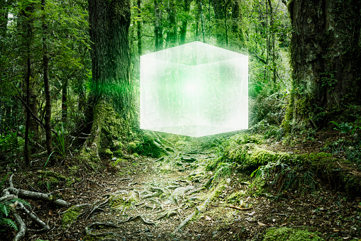 Hovering「Glowing cube floating in forest」:スマホ壁紙(11)