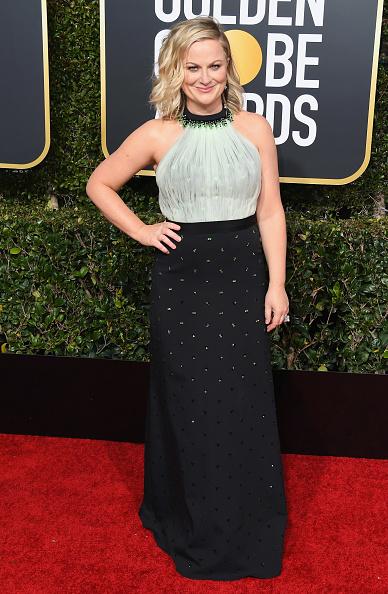Amy Poehler「76th Annual Golden Globe Awards - Arrivals」:写真・画像(17)[壁紙.com]