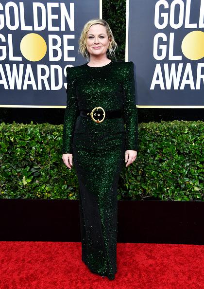 Amy Poehler「77th Annual Golden Globe Awards - Arrivals」:写真・画像(6)[壁紙.com]
