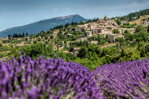 France「Gordes , Province France as background of the lavender field during summer」:スマホ壁紙(18)