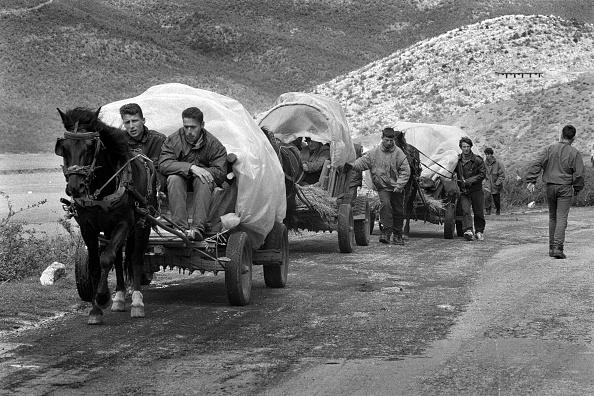 Tom Stoddart Archive「Albania, nr Kukes, refugees fleeing across border (B&W)」:写真・画像(14)[壁紙.com]