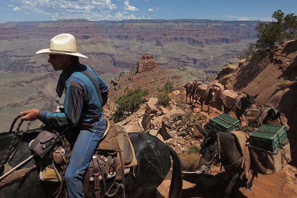Grand Canyon National Park「Travel Destination: Western USA」:写真・画像(3)[壁紙.com]