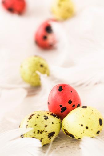 ウズラの卵「クウェイルイースター卵」:スマホ壁紙(6)
