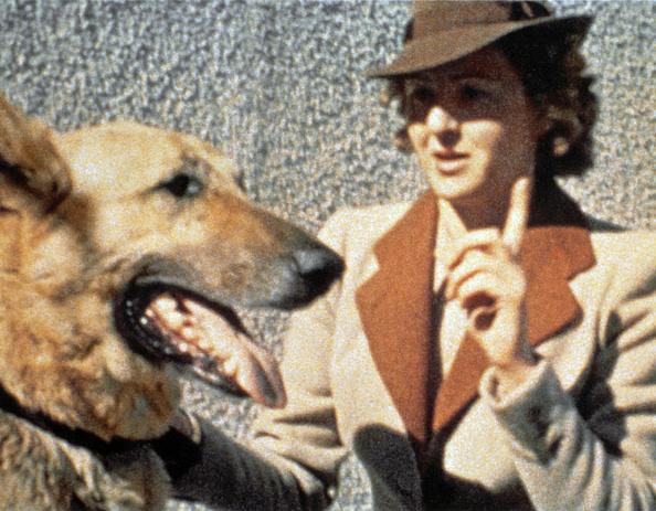 動物「Eva Braun And Blondi」:写真・画像(8)[壁紙.com]