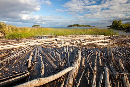 Deforestation「Fort McMurray, Canada」:スマホ壁紙(15)