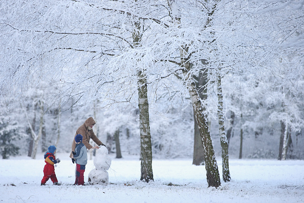 雪だるま「First Season's Snowfall In Berlin」:写真・画像(17)[壁紙.com]