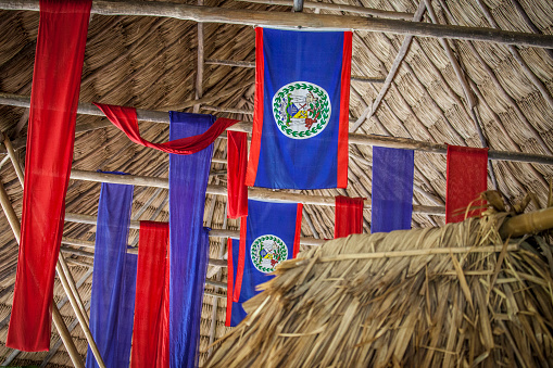 竹「Belize flags hang from the ceiling in a jungle bar」:スマホ壁紙(13)