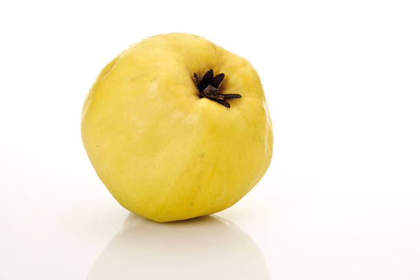 Single quince, (Cydonia oblonga),close-up:スマホ壁紙(壁紙.com)