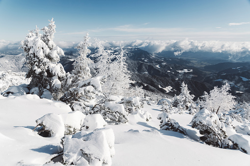 25-29 Years「View of snowy winter nature from the mountains on a sunny day」:スマホ壁紙(10)