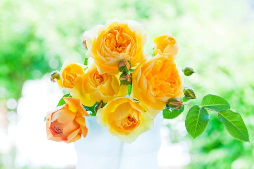 Flower Arrangement「Yellow Roses」:スマホ壁紙(9)