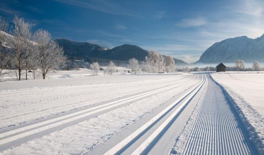 クロスカントリースキー「パノラマの冬のクロスカントリースキートラック(XXXL」:スマホ壁紙(1)