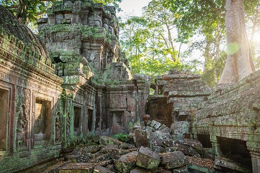 Ta Prohm Temple「Angkor Wat Ta Prohm Dusk, Cambodia」:スマホ壁紙(2)