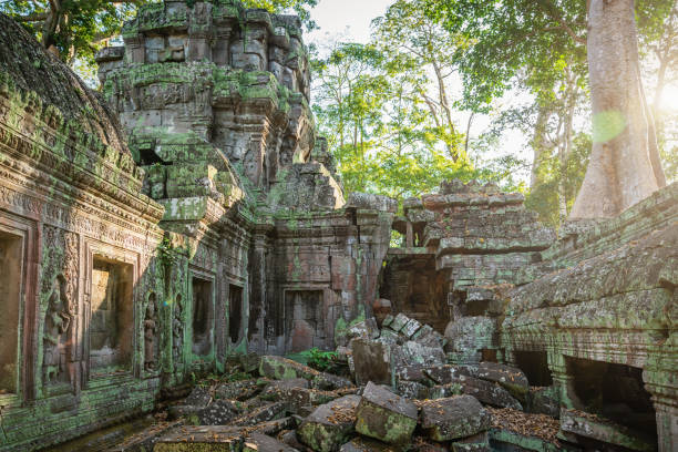 Angkor Wat Ta Prohm Dusk, Cambodia:スマホ壁紙(壁紙.com)