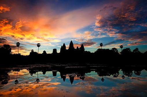 Water Lily「Angkor Wat」:スマホ壁紙(4)