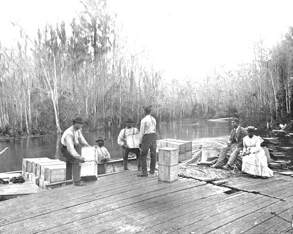 1900-1909「Loading Oranges On The Ocklawaha River」:写真・画像(3)[壁紙.com]