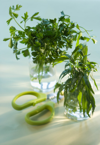 Tarragon「Tarragon, parsley in bottles with scissor, close-up」:スマホ壁紙(16)