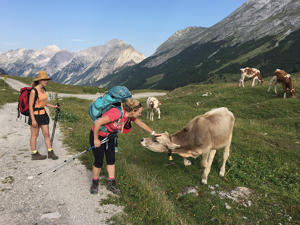 Austria「Hiking Across The Karwendel Mountain Range」:写真・画像(11)[壁紙.com]