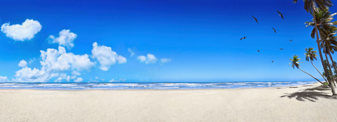 Panoramic「Tropical white sand virgin beach」:スマホ壁紙(5)