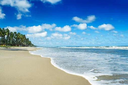 ビーチ「トロピカルな白砂のビーチの聖母」:スマホ壁紙(7)