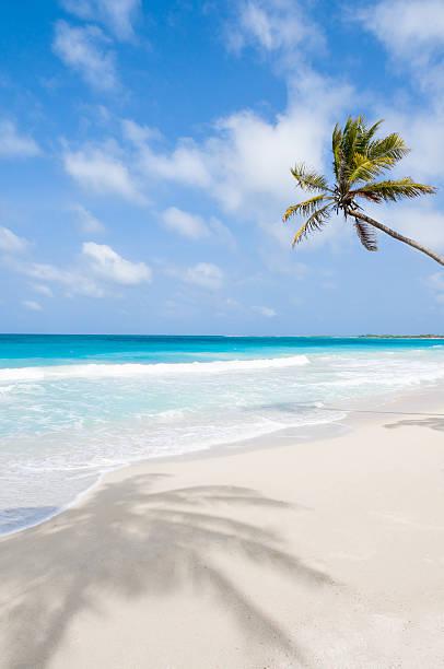 Tropical white sand beach:スマホ壁紙(壁紙.com)