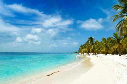 Island「Tropical white sand island beach」:スマホ壁紙(0)