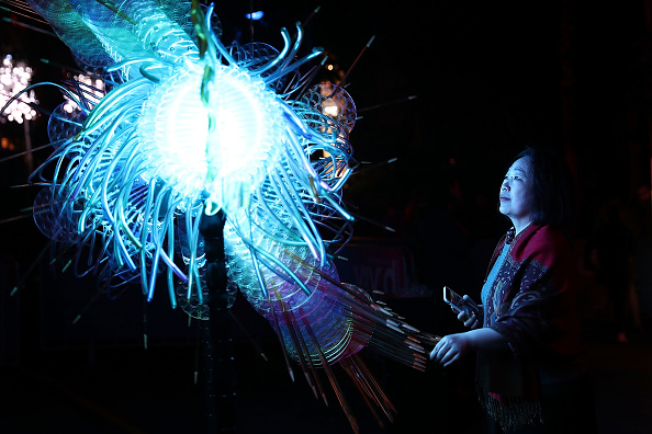 熱帯魚「Vivid Sydney At Circular Quay & The Rocks Media Preview」:写真・画像(3)[壁紙.com]