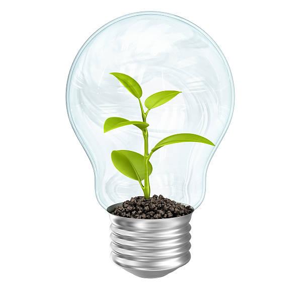 plant in lightbulb:スマホ壁紙(壁紙.com)