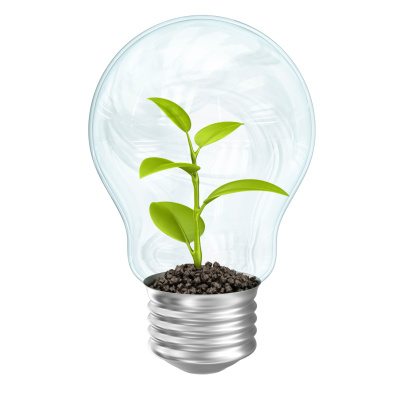 Planting「plant in lightbulb」:スマホ壁紙(1)