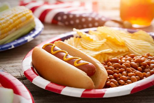 Ice Tea「Fourth of July Holiday Hot Dog Backyard Barbecue」:スマホ壁紙(8)